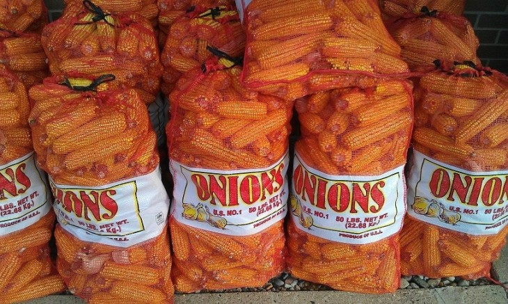 Elotes en costales de cebollas
