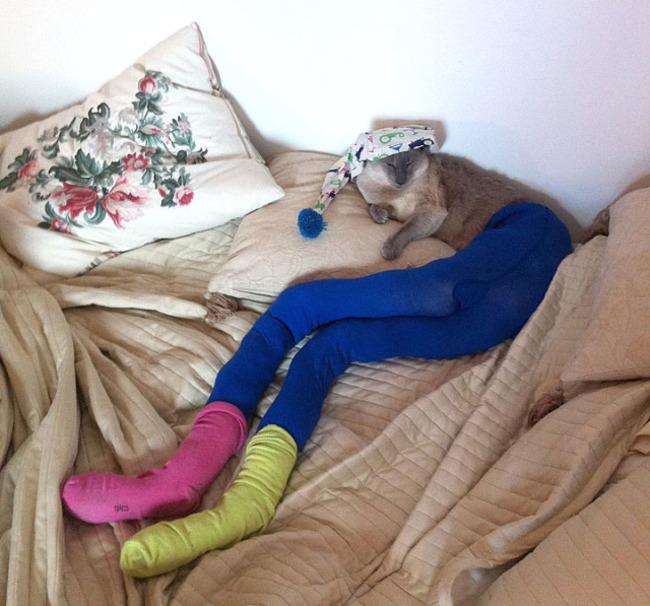 Gato con medias, calcetines y gorro de dormir
