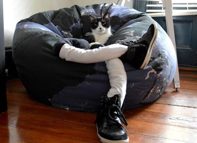 Gato con medias en un sofá