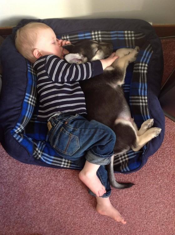 Niño y gato durmiendo