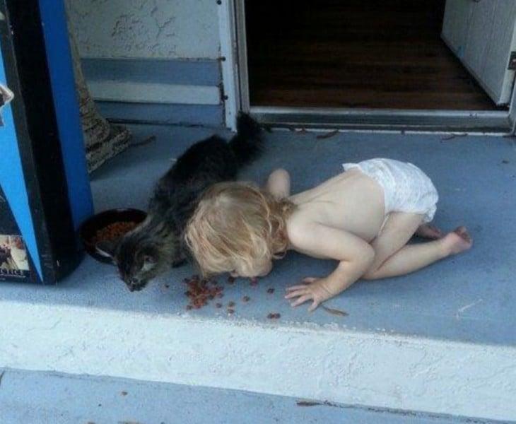 Niño comiendo alimento para gatos,  junto a gato