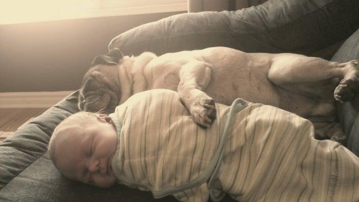 bebe duerme aabrazado a un perro