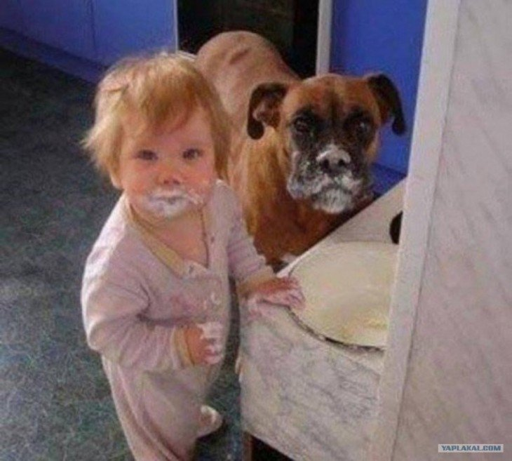 Niñaa se maquilla con el perro