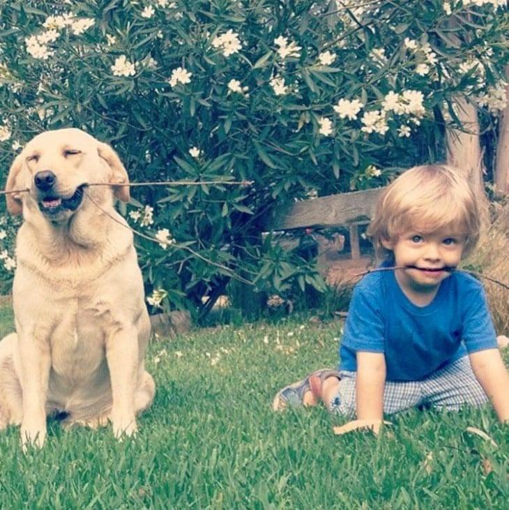 Niño junto a un perro