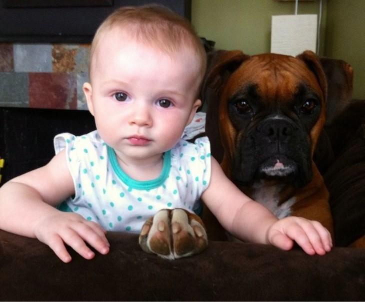 Niña junto a perro