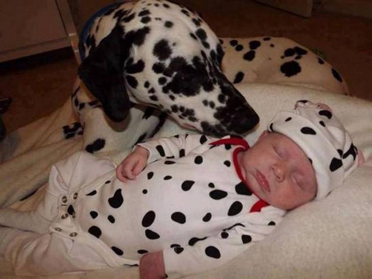bebe con perro dalmata