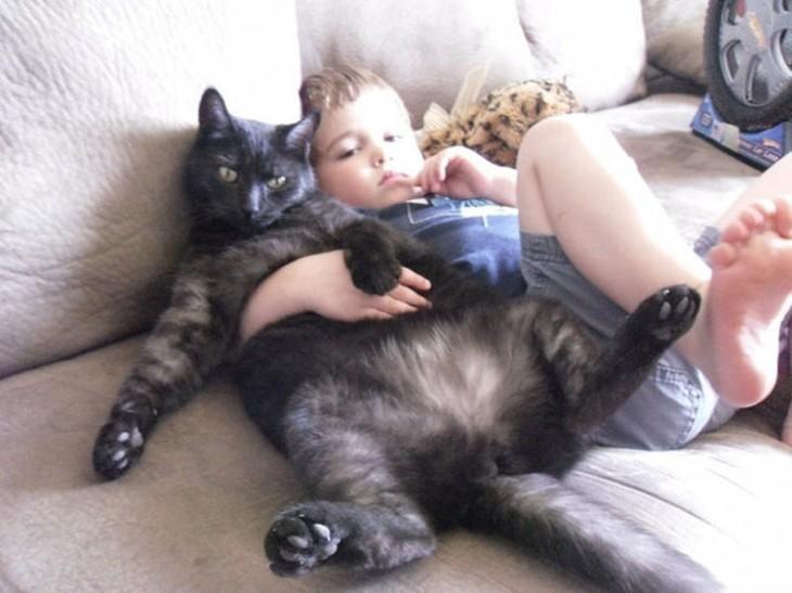 Niño abrazado a gato