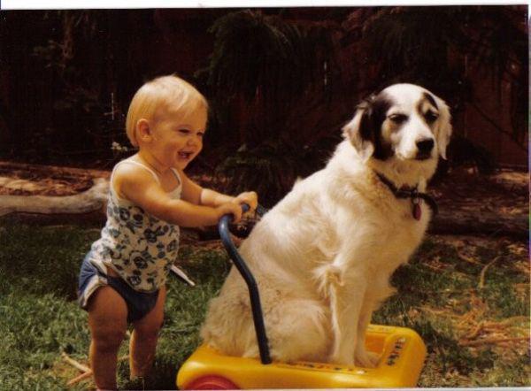 Niña con un perrito sobre un carro