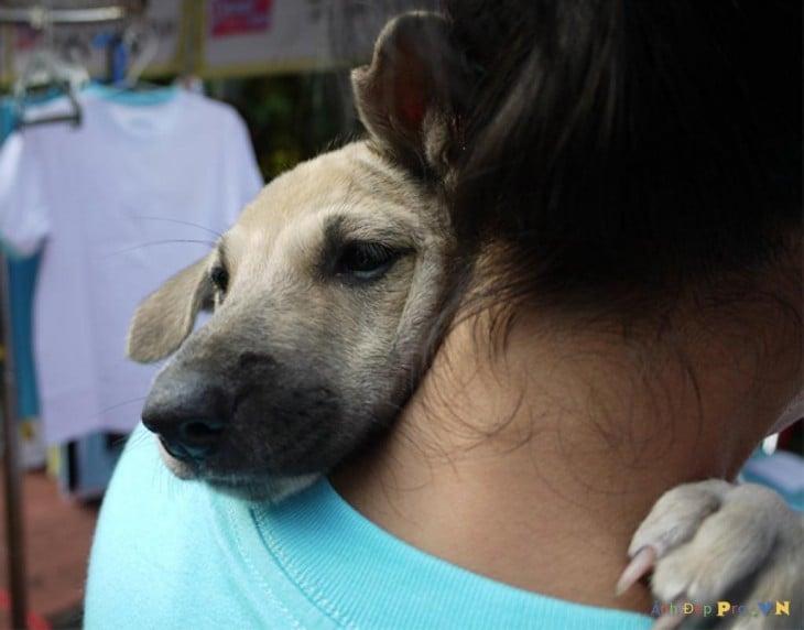 perro triste abrazando amujer