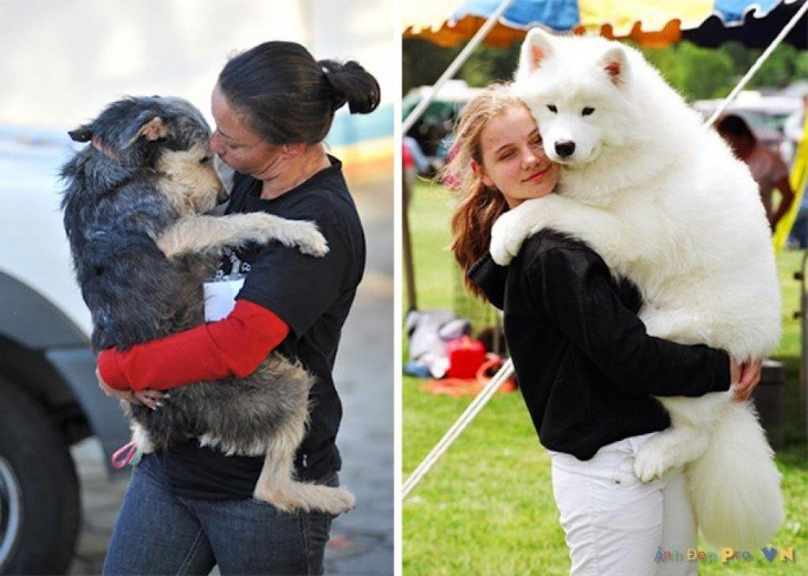 mujeres abrazando a sus perros