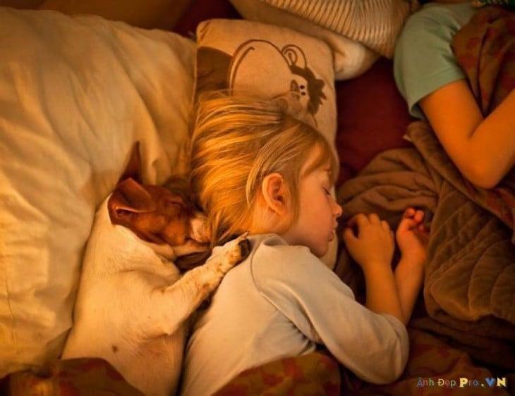 perro durmiendo con nena
