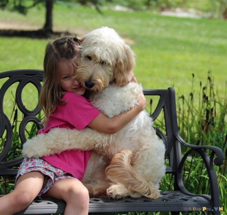 perro abrazando a nena en banco