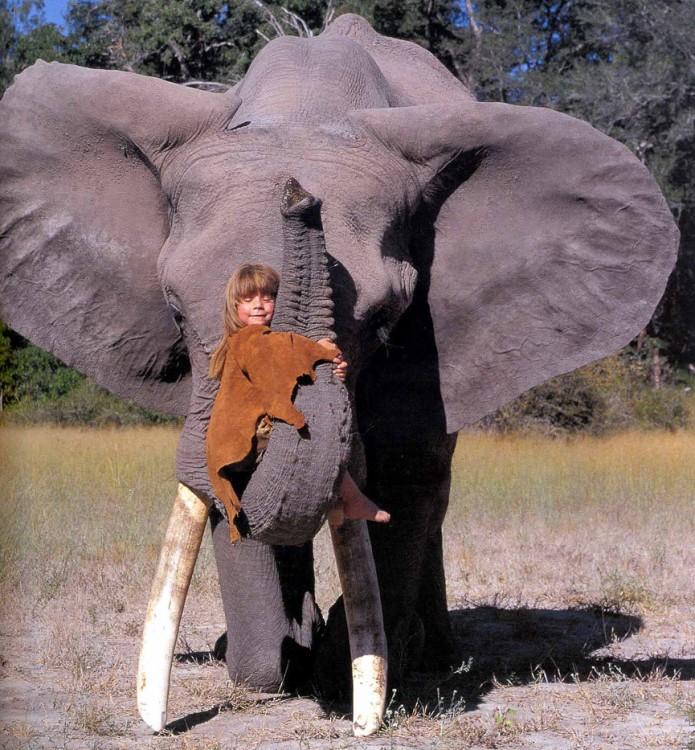 Evo el elefante mejor amigo de tippi