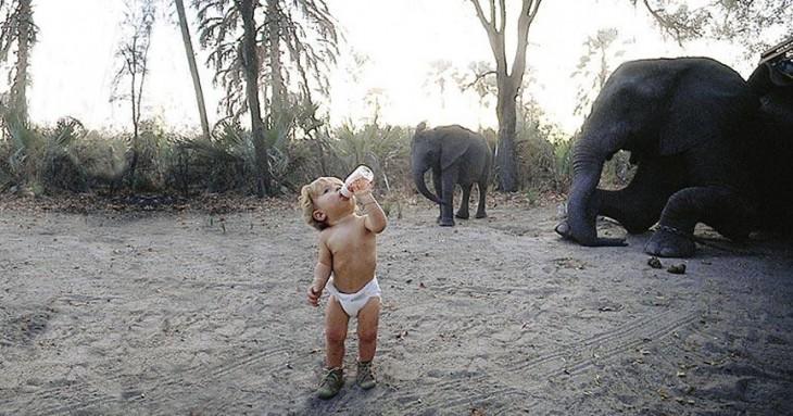 tippi tomando biberon frente a los elefantes
