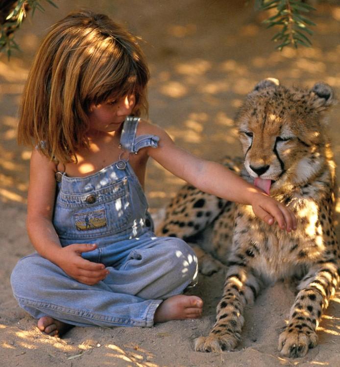 tippi con un guepardo como amigo