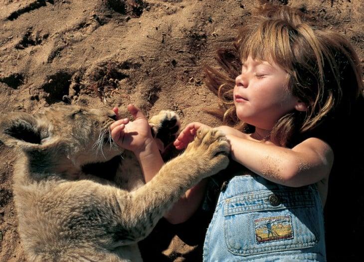 tippi conviviendo con un león bebé