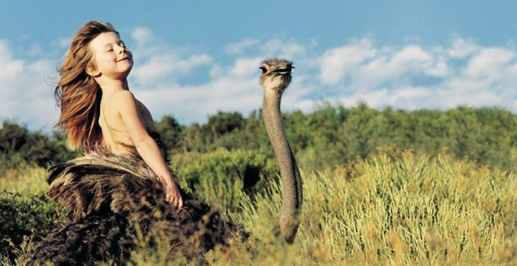 tippi sobre una avestruz