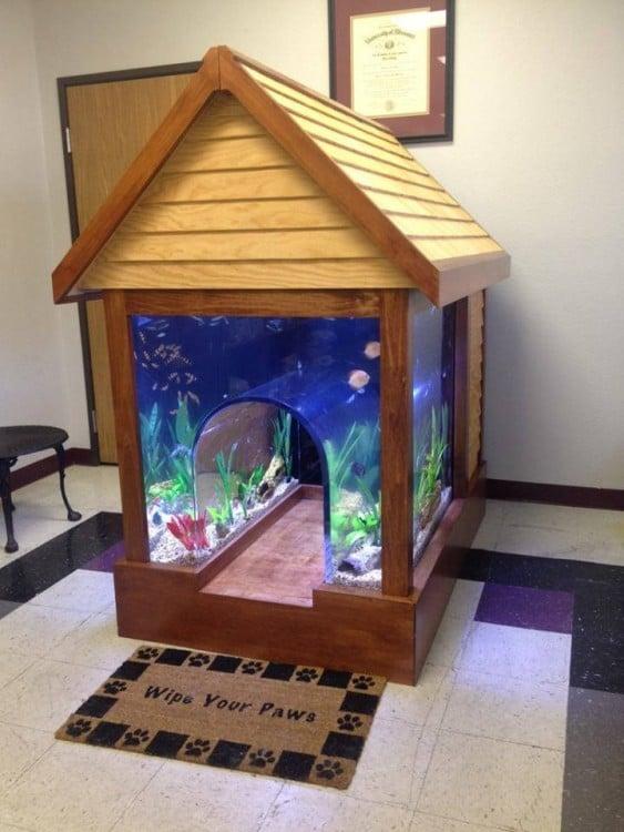 casa para perro en forma de un acuario