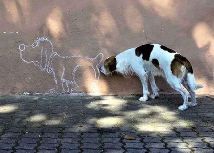 perro huele trasero de un graffiti