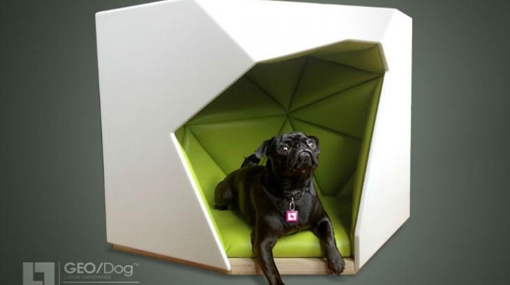 perro negro denro de una casa blanco con verde de en forma de triangulos
