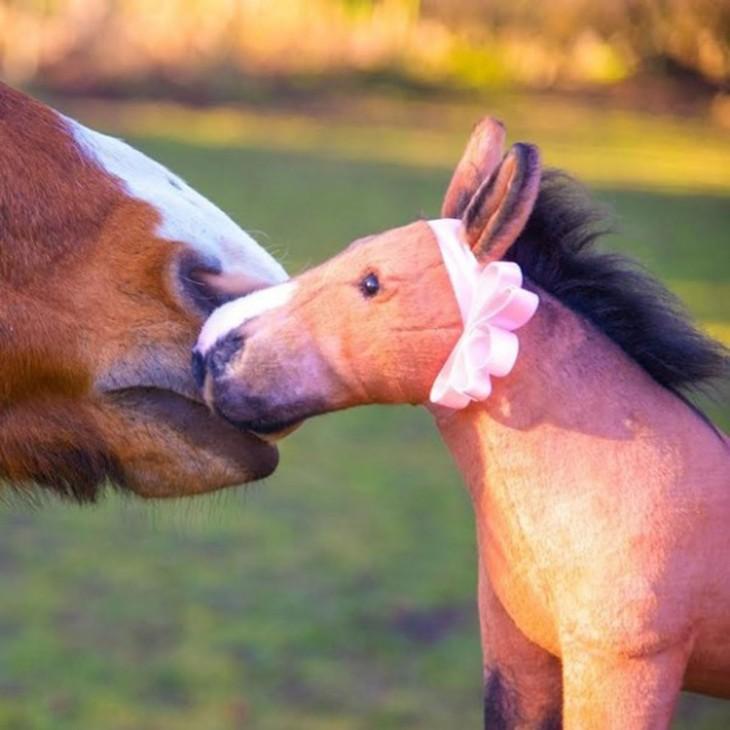 caballo con su peluche identico