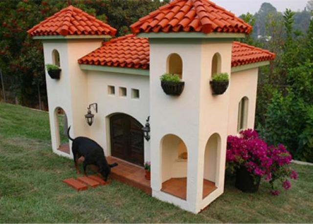 mansion con techos de teja para un perro