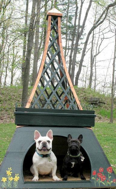 casa de perro en forma de la torre eiffel