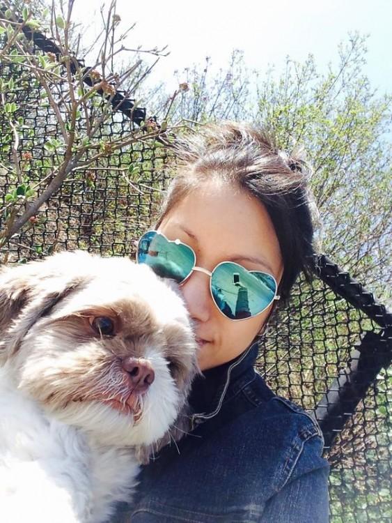 perro que no se ve muy contento con la selfie