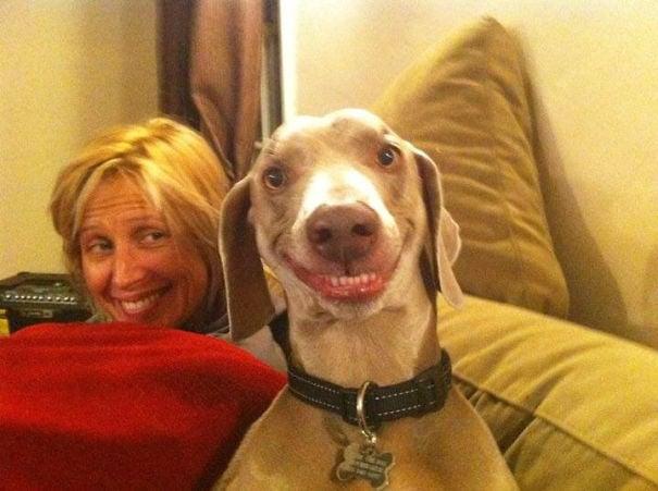 perro sonríe igual que su dueña