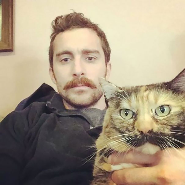 gato y dueños bigotones en selfie