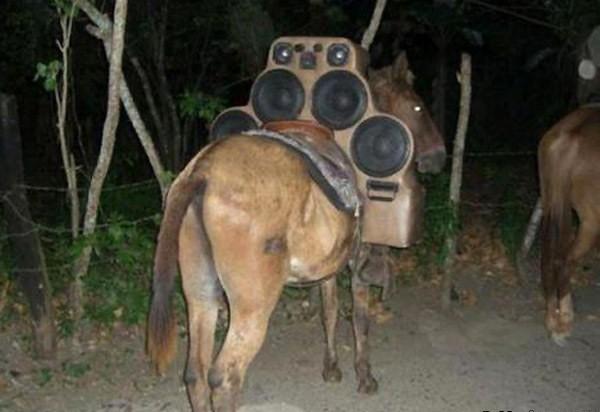 le ponen bocinas en forma de montura a caballo para tener el sonido movil en todo momento