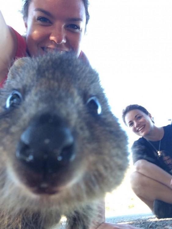 selfie 17