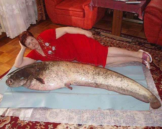 mujer junto a pescado posa para la foto