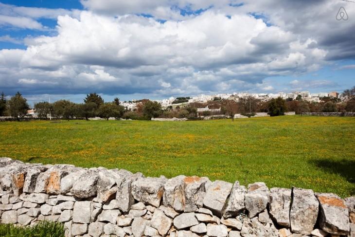 paisaje con muro hecho en piedra