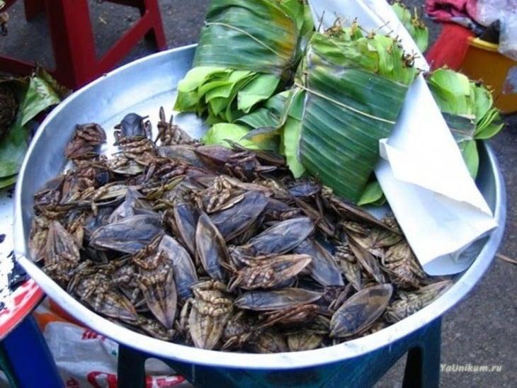 Un recipiente lleno de chinches de tamaño enorme con hojas de plátano