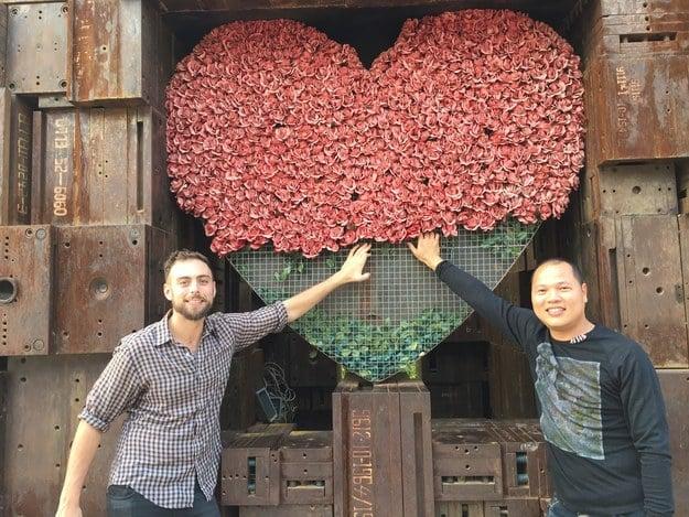Matt Stopera y el hermano naranja tocando un corazón de rosas