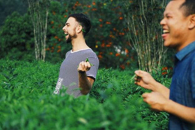 Matt Stopera y el hermano naranja en una granja de té