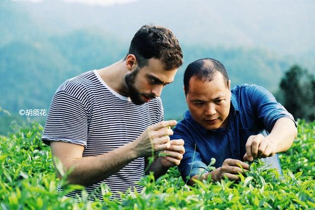 Matt Stopera con el hermano naranja viendo la planta del té