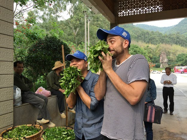 Matt Stopera y el hermano naranja oliendo la planta del té