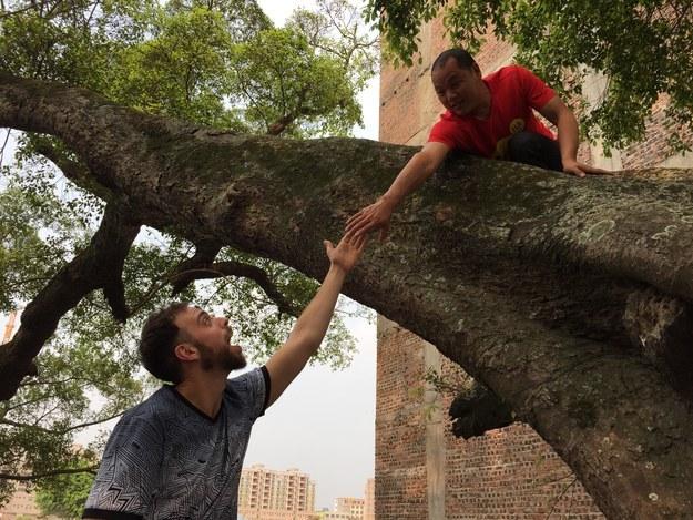 Matt Stopera y el hermano naranja tomados de la mano entre un árbol