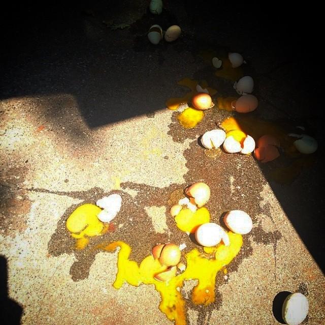 Huevos rotos sobre el suelo