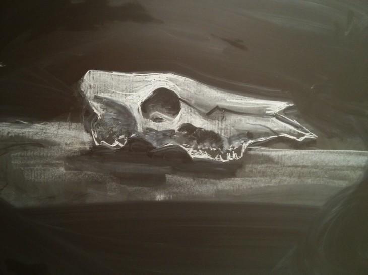 Dibujos en la pizarra de un cráneo