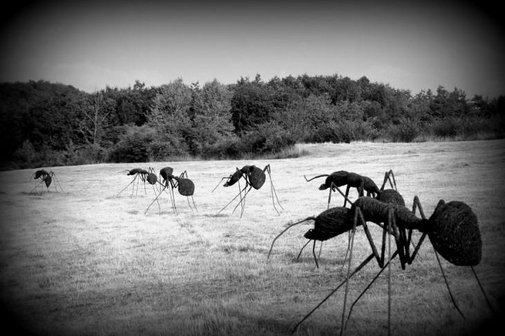 Escultura con formas de hormigas en un campo