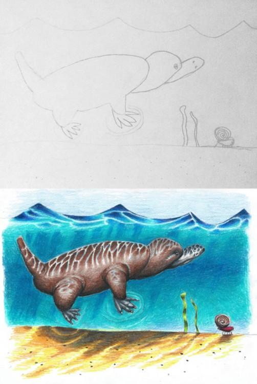 dibujo de platipus en el agua