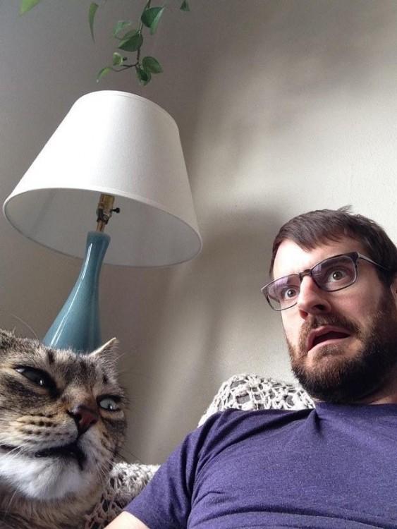 Gato frente a un chico con cara de sorprendidos