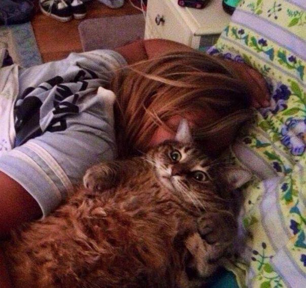 Gato con cara de asustado a un costado de una chica que esta dormida