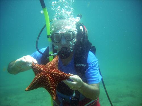 adulto mayor buceando y con estrella de mar en la mano