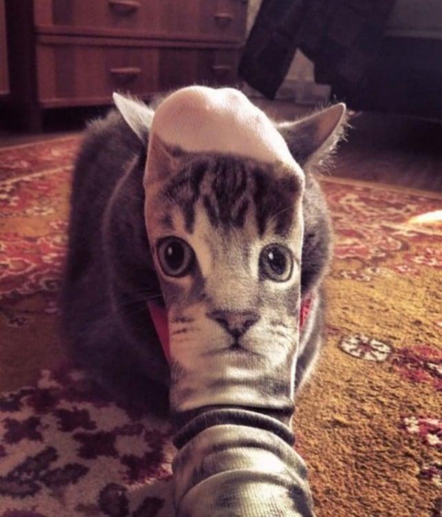 Calcetín con la cara de gato frente a un gato