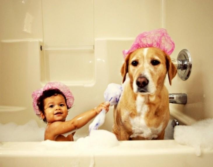 Niño junto a un perro con gorras de baño en color rosa dentro de una tina con espuma
