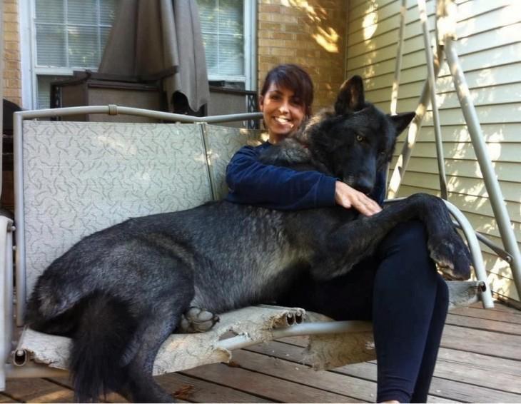 Chica junto a su perro grande sobre un columpio